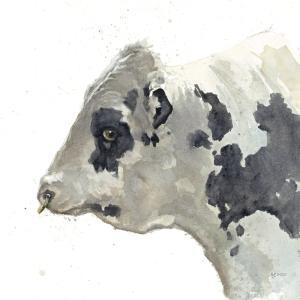 HolsteinBull-Leo-watercol-pic-11-cmyk