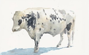 'Leo' Holstein Bull