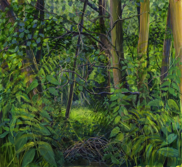 Marshy woods, nettles and mosquitoes